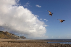 over-charmouth-beach