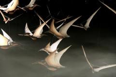 pterodactyl-flock