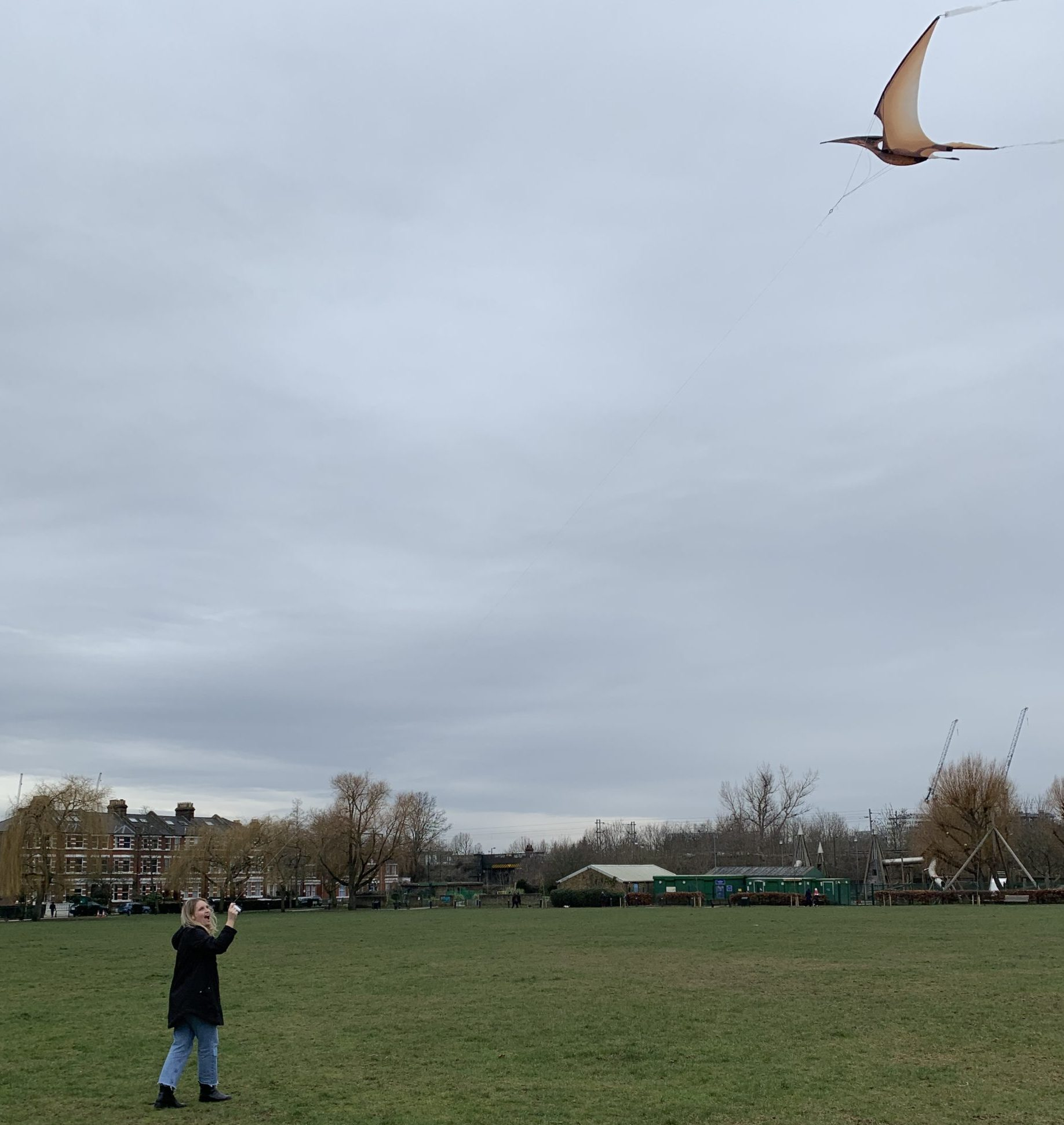 Absolutely love the kite!